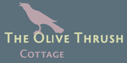 The Olive Thrush Cottage – Prince Albert Logo